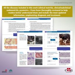 Uterine Diseases. Essential...