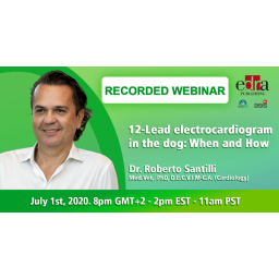 RECORDED WEBINAR -  12-Lead...