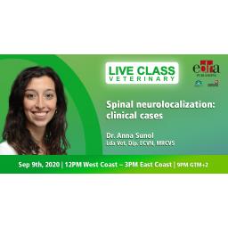 Spinal neurolocalization:...