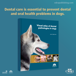 Visual Atlas of Dental Pathologies in Dogs - Book cover - Veterinary Book