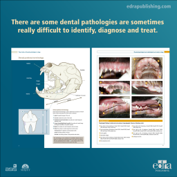Visual Atlas of Dental Pathologies in Dogs - Book extract - Veterinary Book