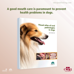 Visual Atlas of Oral Pathologies in Dogs - Book cover - veterinary book