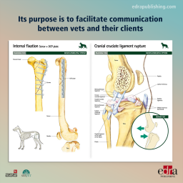 Pet Owner Educational Atlas. Surgery - book extract - veterinary book