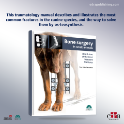 Bone surgery in small animals - Book details - Veterinary Book