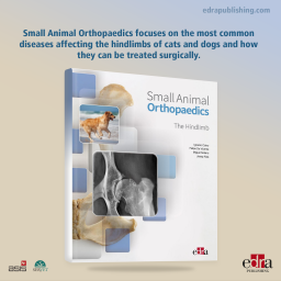 Small animal orthopaedics. 