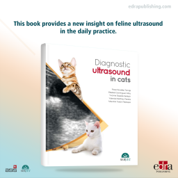 Diagnostic Ultrasound in Cats - Book Cover - Veterinary Book