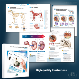 Pet Owner Educational Atlas. Dogs - Book Extract - Veterinary Book
