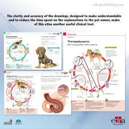 Pet Owner Educational Atlas. Parasites - book extract 2 - veterinary book