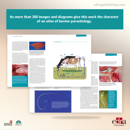 60 Q&A on bovine parasitology. A handbook of question and answers - book extract 1 - veterinary book
