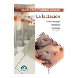Manejo y gestión de maternidades porcinas II. La lactación