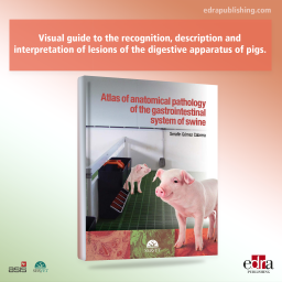 Atlas of anatomical pathology of the gastrointestinal system of swine - book cover - veterinary book