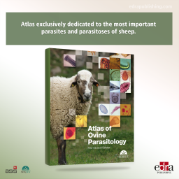 Atlas of ovine parasitology - book cover - veterinary book