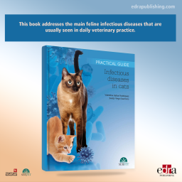 Infectious Diseases in Cats. Practical Guide - book cover - veterinary book