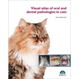 Visual Atlas of Oral and Dental Pathologies in Cats - Book cover - Veterinary book