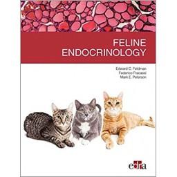 Feline endocrinology - Feldman Peterson Fracassi - Book Cover - Veterinary Book