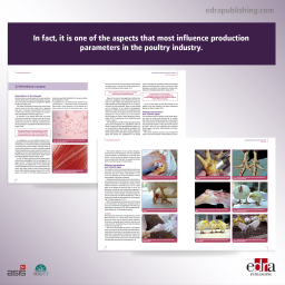 Vaccination in poultry