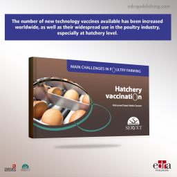 Hatchery Vaccination. Main challenges in poultry farming