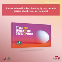 Atlas of Embryonic Development