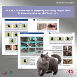 Feline Ophthalmology. The...
